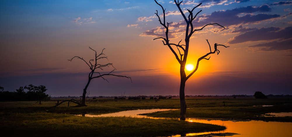Coucher de soleil sur la rivière Chobe