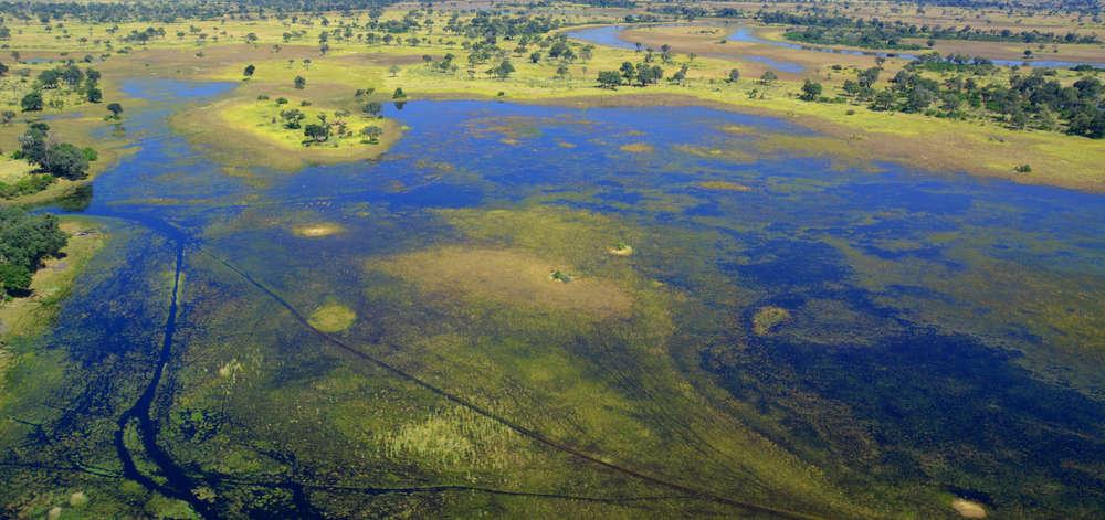 Vision Aérienne du Delta de l'Okavango