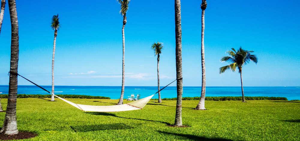 Palmiers, Nassau, New Providence