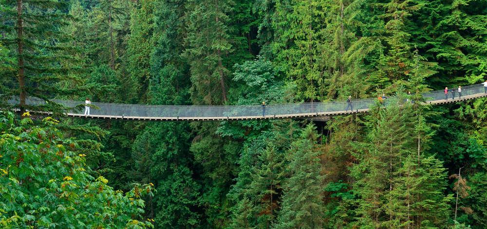 Pont suspendu Capilano, Vancouver